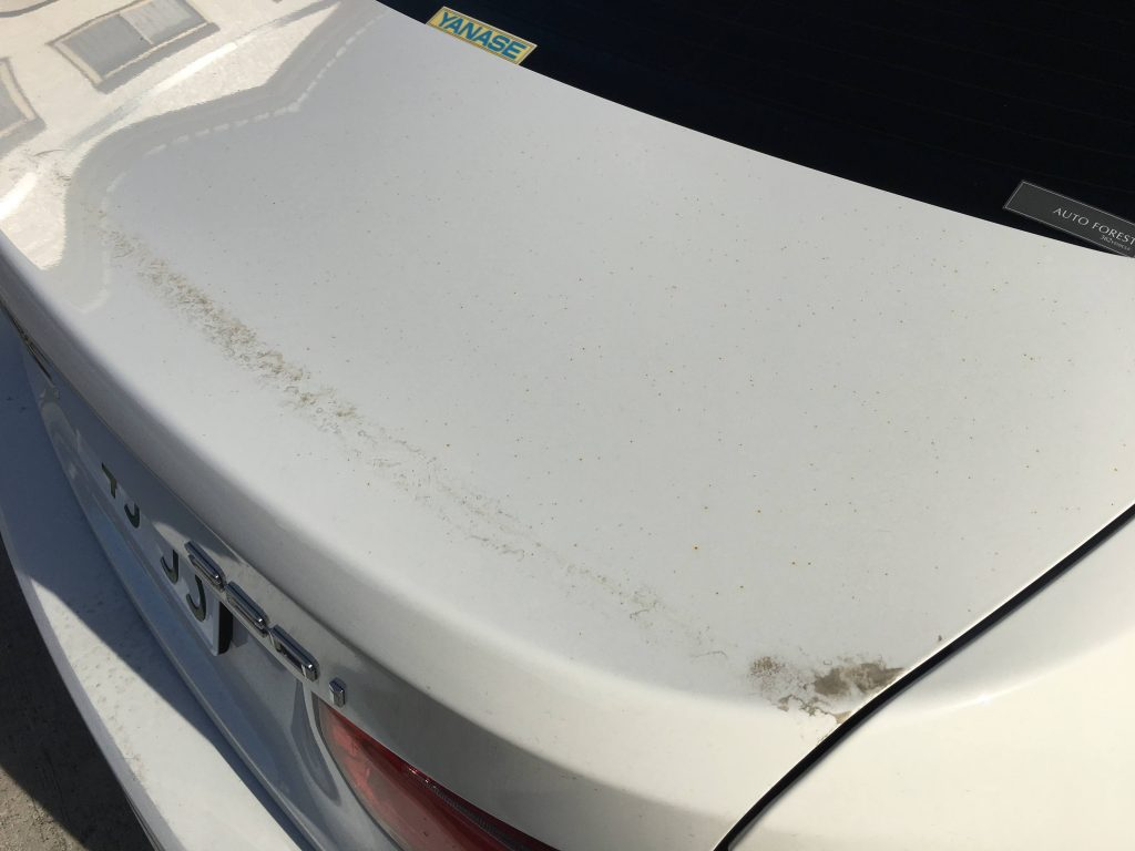 BMW鉄粉飛散事故の復元施工前 (17)