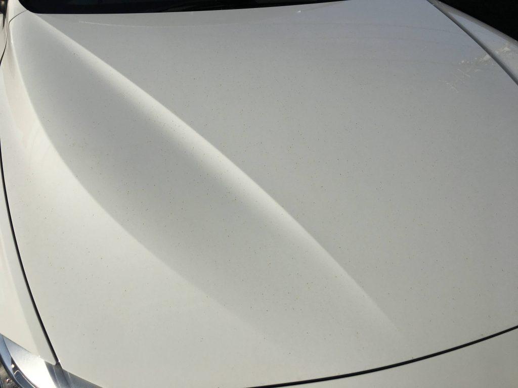 BMW鉄粉飛散事故の復元施工前 (3)